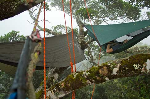 Canopy Camping - Ben Holdaway